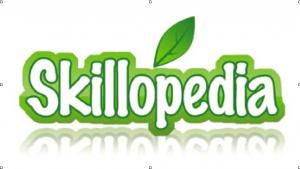Skillopedia - видеоуроки на все случаи жизни