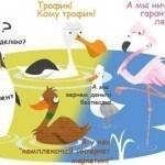 SEO тендер в регионах России — и смешно и страшно