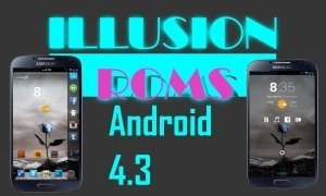 Illusion ROMS